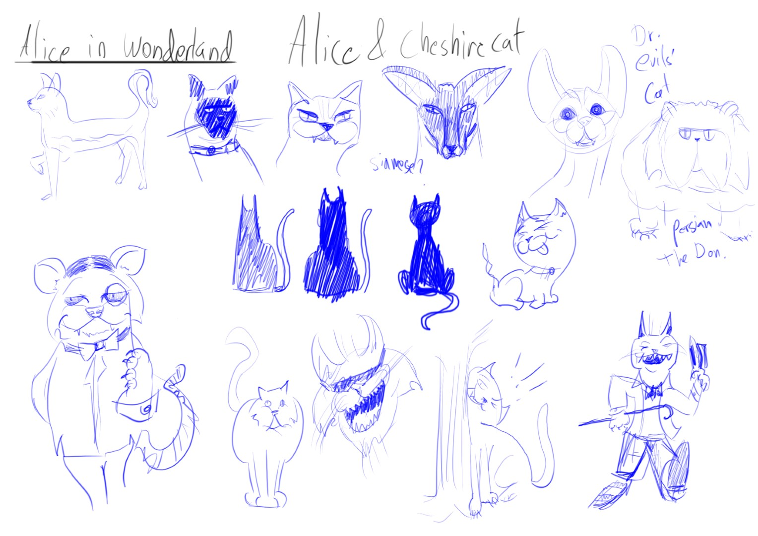 Alice - Cheshire Cat (3)