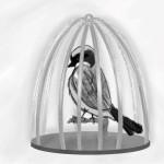 Sparrow in a Cage
