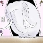elephants-color